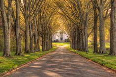 Hoge Building at Berry College by Brett Godwin, via Flickr