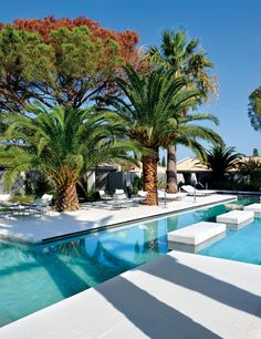 Pool at the Hotel Sazz in Saint Tropez, France designed by Studio Ory Saint Tropez, Hotels And Resorts, Best Hotels, Hilton Hotels, Top Hotels, Cheap Hotels, Beach Resorts, Piscina Hotel, Luxury Houses