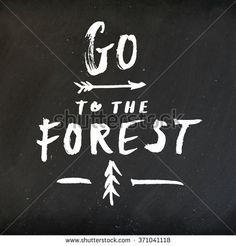 "Hand drawn typography design on vintage chalkboard. Hand lettering ""Go to the Forest"" typography or calligraphy poster on blackboard"