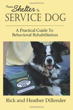 From Shelter To Service Dog: A Practical Guide To Behavioral Rehabilitation by Rick Dillender http://smile.amazon.com/dp/0989381609/ref=cm_sw_r_pi_dp_4ptNtb0JH97GK0KC