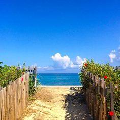 【tripmind】さんのInstagramをピンしています。 《いつかの青空🌴 今月に入ってまだ2.、3日くらいしか、 晴れてませ〜ん😂 青空不足の今日この頃ですが…。 気持ち明るくLet'sらGO〜🌈 #okinawa#ocean#beach#sea #blue#sky#happylife#love#day #sunny#smile#peace#power #沖縄#海#ビーチ#晴れた日#青空 #ハイビスカス#癒し#風景#過去pic #沖縄フォト祭り#沖縄ブルー #繋がる空#いつも心はそばに #沖縄好きな人と繋がりたい #写真好きな人と繋がりたい #ダレカニミセタイケシキ #ダレカニミセタイソラ》