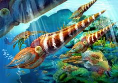 Watch Free Documentary - The Secrets of the Ordovician Period - History Documentary - The Ordovician Period lasted almost 45 million years, beginning 488.3 million years ago and ending 443.7 million years ago.