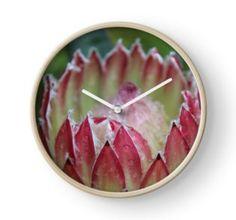 """Protea 'Southern Cross'"" Clocks by Framed Art Prints, Canvas Prints, Quartz Clock Mechanism, Modern Prints, Hand Coloring, Art Boards, Clocks, Southern, Stationery"