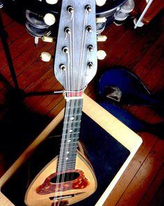 Enfin remis des cordes sur cette vieille mandoline bretonne. Elle a un son ... Euh expérimental #mandolin #sitar #bretonnerie