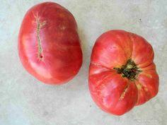 ντομάτα Σαλμονίκο Permaculture, Agriculture, Fruit, Vegetables, Plants, Gardening, Barbecue, Films, Books