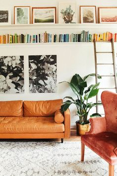 picture ledge + bookshelf, midcentruy sofa