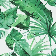 Exotic green leaves on white behang 17671 uit de collectie Designed for Living BN Wallcoverings.