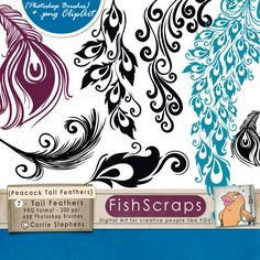 50 Sale  Peacock Tail Feathers Clip Art  Photoshop by FishScraps, $3.38