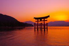 沈むとオレンジから紫へと・・宮島厳島神社の鳥居 2013 05 04