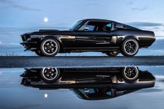 1967 Mustang Fastback. Check out Facebook and Instagram: @metalroadstudio Very cool!