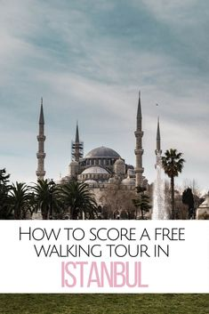 Want to score a free walking tour Istanbul? Book your ticket with Turkish Airlines, enjoy a layover, and see some of the best sights in Istanbul - for free! What to see in Istanbul Istanbul Airport, Turkish Airlines, Blue Mosque, Grand Bazaar, Travel Advice, Travel Tips, Istanbul Turkey, Places To Travel