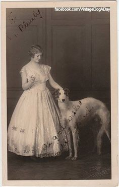 ❤ =^..^= ❤ Borzoi, undated. Format: Photograph (autograph style). Origin: Leeds, UK. From Vintage Dog A Day.