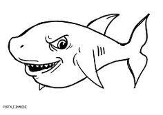 36 fantastiche immagini su squalo nel 2019 segno dei pesci cartoni animati e grande squalo bianco