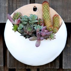 Ceramic wall pocket with succulents