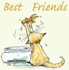 """Best Friends Gifts and Greeting cards for cat lovers, mugs and cards. Anita Jeram illustrated """"Guess How Much I Love You"""" Animal Sketches, Animal Drawings, Anita Jeram, Cat Cards, Greeting Cards, Wow Art, Cat Drawing, Cute Illustration, Crazy Cats"""