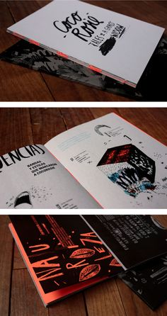 Pressbook / Recital CocoRosie by Ro Gal, via Behance