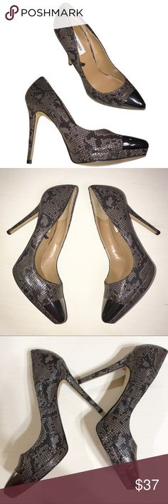 Steve Madden Snake Metallic Toe Pumps Steve Madden taupe and black snake print high heels. Metallic pewter toe. Great condition and very clean inside and out, no scuffs on snake print, a couple of very minor surface scratches on metallic toe but hardly noticeable, minor normal wear to soles. Steve Madden Shoes Heels