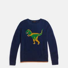 Dinosaur Sweater   Coach