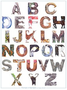 Animals in Alphabet Poster by Casey Girard