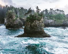 cape flattery. olympic national park. washington. - Processed with VSCO with s2 preset