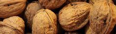 Las nueces son unos frutos secos muy saludables. Y contrariamente a lo que se piensa, se pueden comer en dietas de adelgazamiento. No deje de leer esta entrada para descubrir todos sus beneficios.
