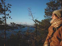 Gressholmen Oslo Norway wald meer