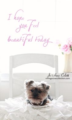 Piece Of Me, How To Feel Beautiful, Evans, Beauty Hacks, Shabby Chic, Thankful, How Are You Feeling, Live, Words