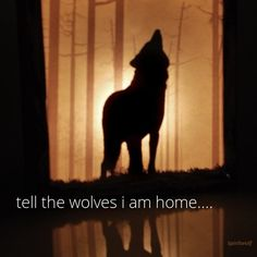 tell the wolves i am home...