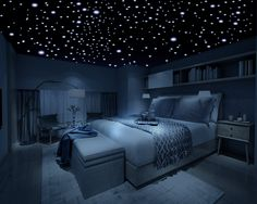 Amazon.com: Firefly Realistic 3D Domed Glow in the Dark Stars (600 stars): Home & Kitchen