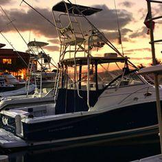 Yates de lujo, catamaranes, snorkeling, botes de pesca deportiva para grupos privados o eventos especiales. Solo en Puerto Aventuras tenemos los mejores precios