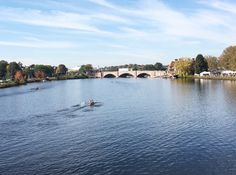 Head of the Charles Regatta - Life Lately - The Boston Day Book