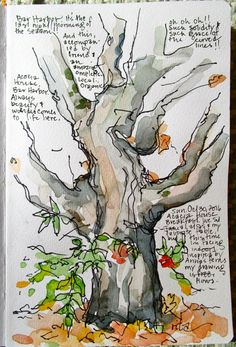 Sketchbook Wandering : An Old Autumn Tree Watercolor Trees, Watercolor And Ink, Watercolour Painting, Watercolor Portraits, Watercolor Landscape, Watercolor Sketchbook, Art Sketchbook, Art Journal Pages, Illustration Botanique