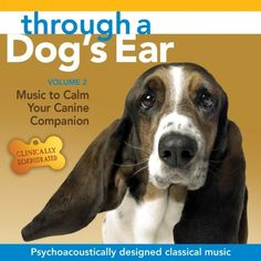 Through a Dog's Ear: Music to Calm Your Canine Companion, Volume 2 Sounds True http://www.amazon.com/dp/B003C1F1PI/ref=cm_sw_r_pi_dp_eZXoub00M9ZNA