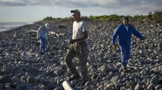 Vol MH370 : à la recherche d'autres débris d'avion sur l'île de La Réunion