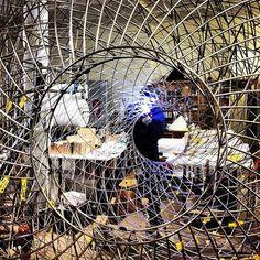 Olafur Eliasson, Called Schools of Movement Sphere at New York gallery Tanya Bonakdar's booth at Frieze London. Photo: Olafur Eliasson via Instagram.
