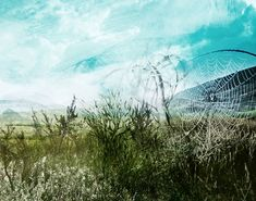Digital Art: South African landscape by Janet Botes Art For Sale Online, Landscape Art, Digital Art, African, Contemporary, Gallery, Artist, Beautiful, Canisters