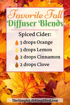 These 10 favorite fall diffuser blends will get you ready for falling leaves and cooler weather! Try out any of these essential oil blends for fall to fill your home with the smell of autumn. #TheSimpleLifeSimplified #diffuserblends #diffuserrecipes #diffuser #essentialoils #YoungLiving