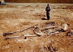 Hoax images purport to show skeletons of human giants (biblical Nephilim or Canaanites) allegedly found in Greece.: Giant Skeletons Found in Greece? Ancient Aliens, Ancient History, Ancient Mysteries, Ancient Artifacts, Unexplained Mysteries, Ufo, Giant Skeletons Found, Human Giant, Nephilim Giants