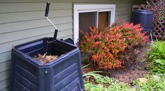 One of the perpetual persnickety problems I have with the garden is turning my compost; a tremendous hassle when you have osteoarthritis and a small urban composting bin. My back hurts, but I have found a solution – the Compost Crank. It's been successful in my garden and when the Compost Crank® team said they wanted to give away a free tool away during the holiday season I was all in for the freebee prize to go to one lucky gardener. Below is a video that features the tool and shows how…