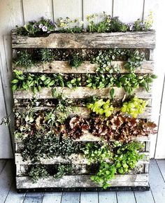 3 Ways To Build An Epic Vertical Garden Anywhere | Rodale's Organic Life