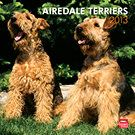 Airedale Terriers 2013 Wall Calendar | Airedale Terriers | CALENDARS.COM