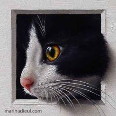 Marina Dieul: Tuxedo Oil painting, detail of a kitten's portrait. Trompe-l'oeil.