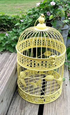 Paint an old bird cage and use for deco in living room