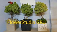Moss Art, Flower Packaging, Rope Basket, How To Preserve Flowers, Flower Designs, Bonsai, Floral Arrangements, Designer, Projects To Try