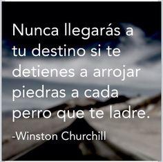 """Ladran Sancho, señal que vamos cabalgando""...dijo el Quijote. Winston Churchill, Unspoken Words, Life Rules, Magic Words, Spanish Quotes, Just Love, Sarcasm, Sentences, Poems"