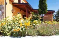 L'Agriturismo Masseria Monte Pizzi a Carovilli è ideale per chi ama fare lunghe passeggiate all'aria aperta nella natura, con negli occhi lo splendido panorama dellAppennino Molisano. Ad accogliervi Maria ed Enzo con la loro famiglia.