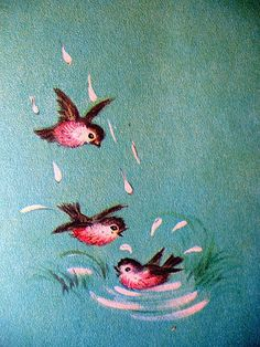 bird art- vintage illustration