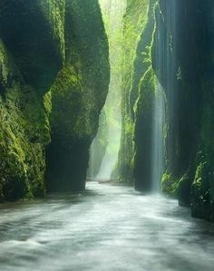 Rainforest Canyon, Oregon
