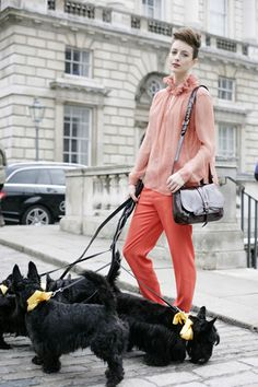 london street style; Scottish terriers. Modeling with your dogs. There is nothing cooler than that!