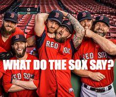 The Bearded Boys! <3 ... 2013 World Series